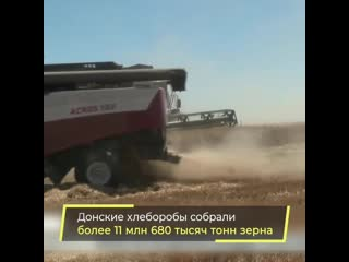 Ростовская область установила новый рекорд по сбору зерна, став лидером по урожаю в России