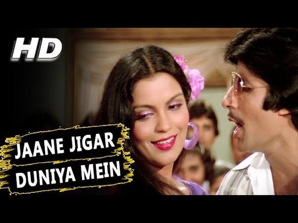 Jaane Jigar Duniya Mein Tu Sabse Haseen Hai R D Burman Kishore Kumar Pukar Songs Amitabh