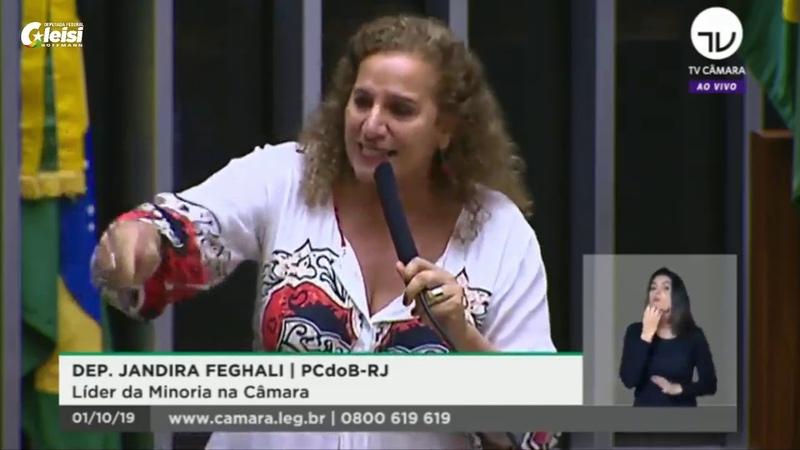 Histórico Jandira faz discurso contra ódio no Congresso e diz que PSL precisa se explicar