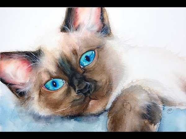 Watercolor Blue Eyed Cat Painting Demonstration