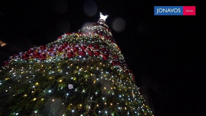 Jonaviečiai Šiais metais Kalėdų eglė gražiausia !
