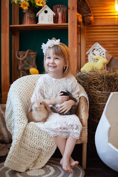 фотостудии с кроликами и утятами омбре подходит тем