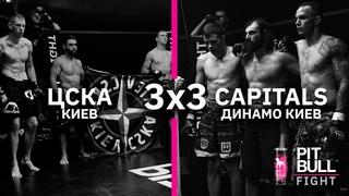 Динамо VS ЦСКА   (командный бой 3х3)   Pit Bull Fight 2020