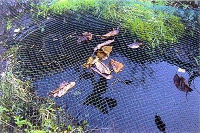 Сетка на пруд
