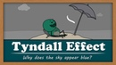 Tyndall Effect - Why does the sky appear blue aumsum kids science education children