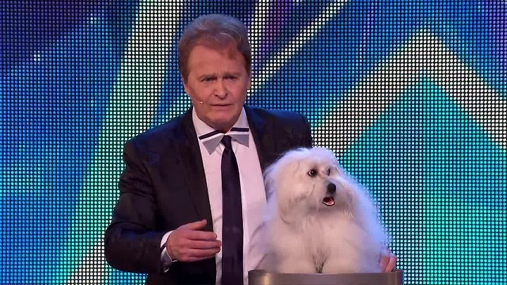 Marc Métral and his talking dog Wendy wow the judges Britain s Got Talent 2015