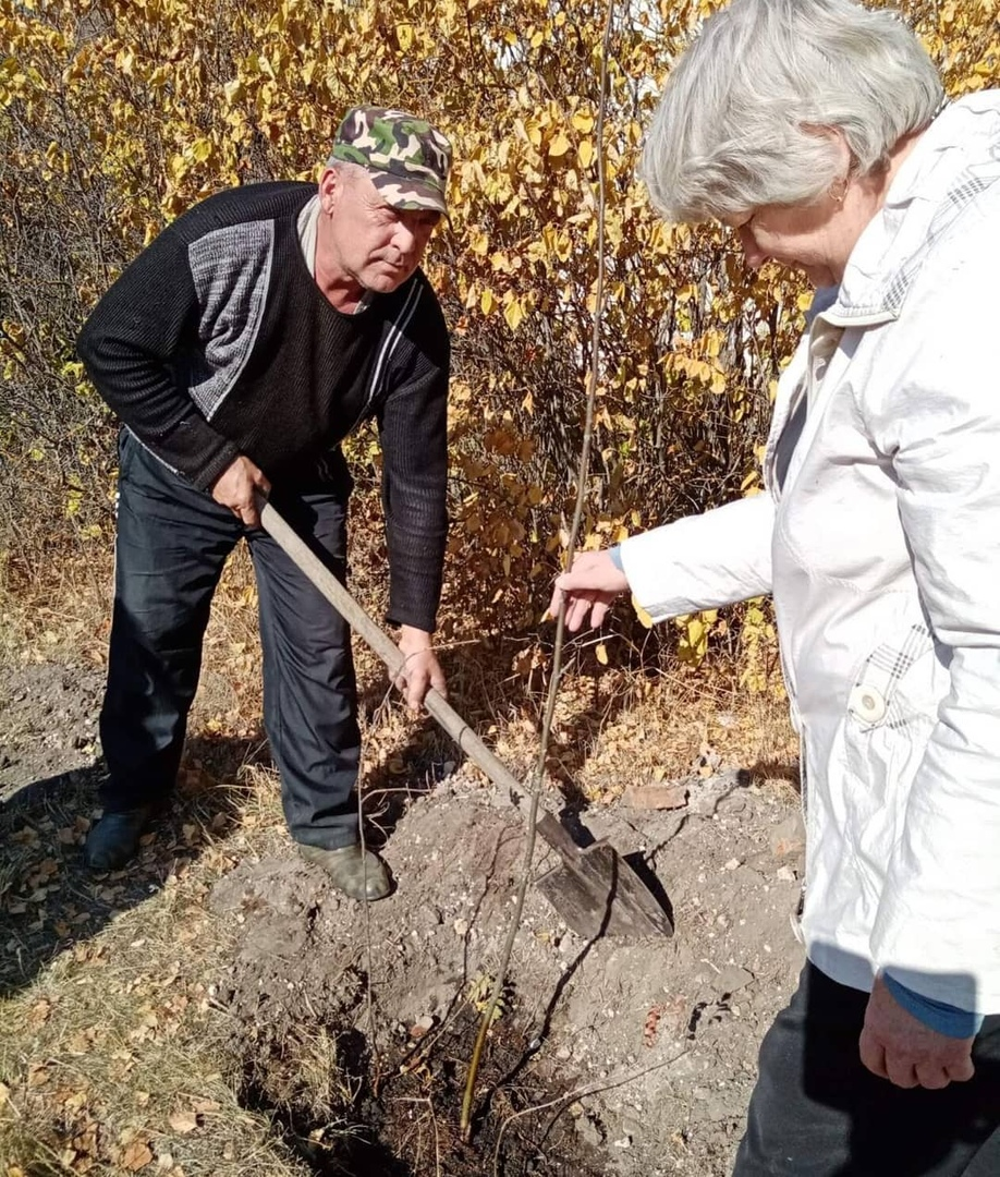 Сотрудники сельских домов культуры Петровского района по мере возможности продолжают благоустраивать территории около своих учреждений