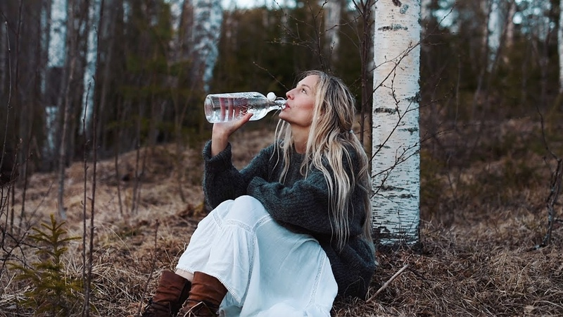 HOW TO TAP BIRCH SAP Health benefits a taste of spring