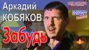 Аркадий КОБЯКОВ - Забудь Концерт в Санкт-Петербурге 31.05.2013