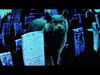 Кладбище домашних животных / Pet Sematary (1989) Алексей Михалев