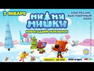 Ми-ми-мишки в Челябинске 2020