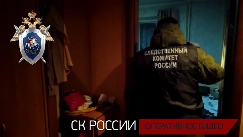 Установлена подозреваемая в совершении убийства малолетней девочки в Вологодской области