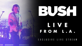 Bush: Live  Private Venue | 2020