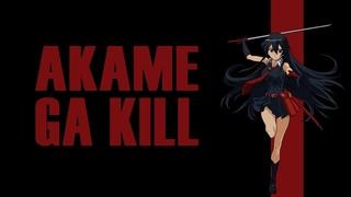 Убийца Акаме. Свергаем власть в Империи. Снова [Обзор аниме]