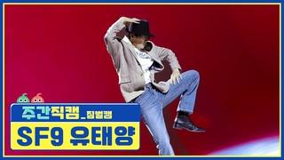[주간아 미방 l Weekly Playlist] SF9 유태양 - 마이클 잭슨 'Smooth Criminal' 짐벌캠 Full ver. l