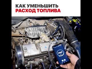 Типичный водитель 1(1)