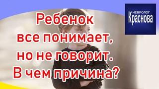 Ребенок все понимает, но не говорит В чем причина? Задержка речевого развития Доктор Краснова.