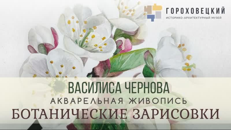 Онлайн экскурсия по выставке Василисы Черновой Ботанические зарисовки 6