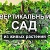 ЛафаСад.рф - Вертикальное озеленение помещений