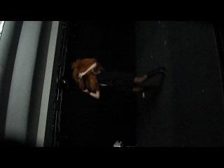 как я пыталась сфотографироваться с головой Гарфильда:)