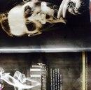 Marilyn Manson фотография #17