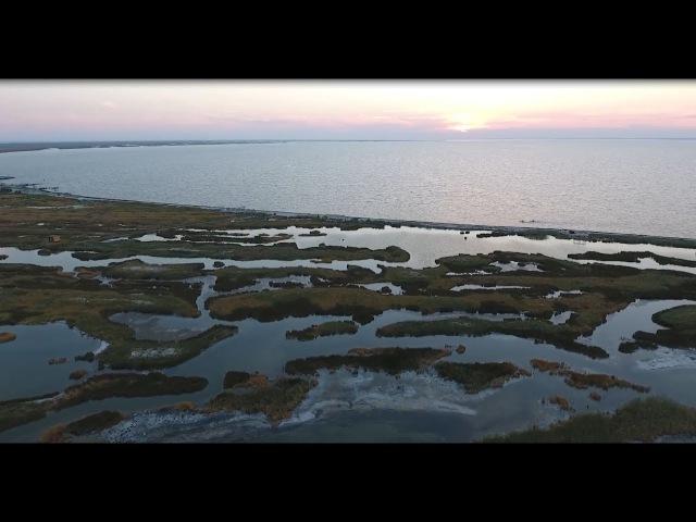Україна. Острів Джарилгач.