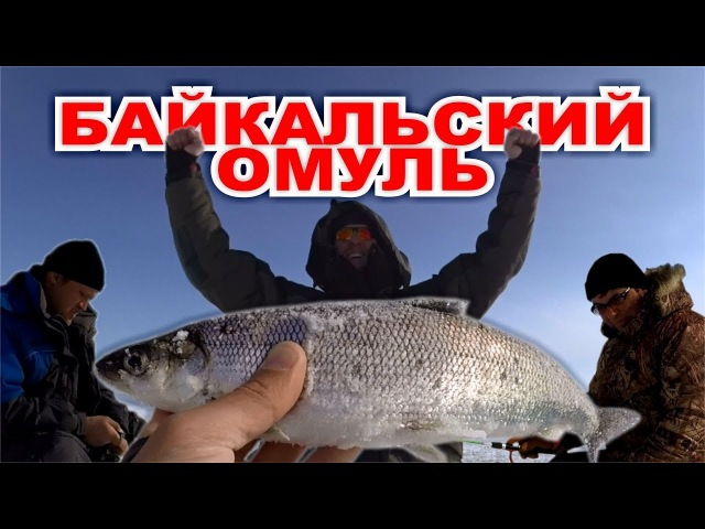 Омулевая рыбалка по братски Байкал 2018