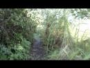 А что вы знаете от тропинках вдоль реки?