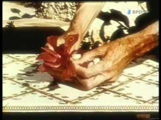 Мелодия становится цветком. Документальный фильм о жизни и творчестве Георгия Иванова (ТК Время, 2010)