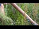 Игра на Диджериду это отличный способ расслабиться на природе Didjeridoo Играет Медведъ