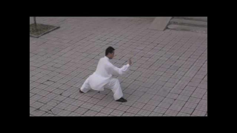 Real Taichi, Bagua and Xingyi Beijing Milun Kungfu School