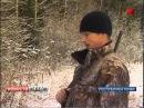 По республике Коми гуляют голодные медведи
