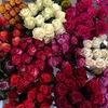 Свежие цветы в Нижнем Новгороде