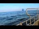 НЛО Объект ныряет под воду