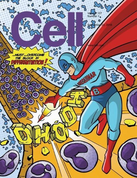 Cell - 22 September 2016 vk.com