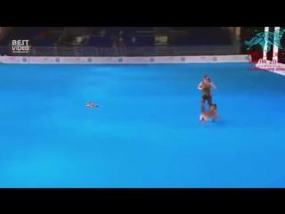 Шикарное выступление на чемпионате по собачьим танцам