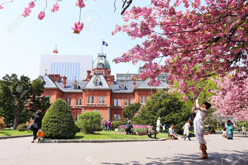 Что нужно для поездки в Японию., изображение №2