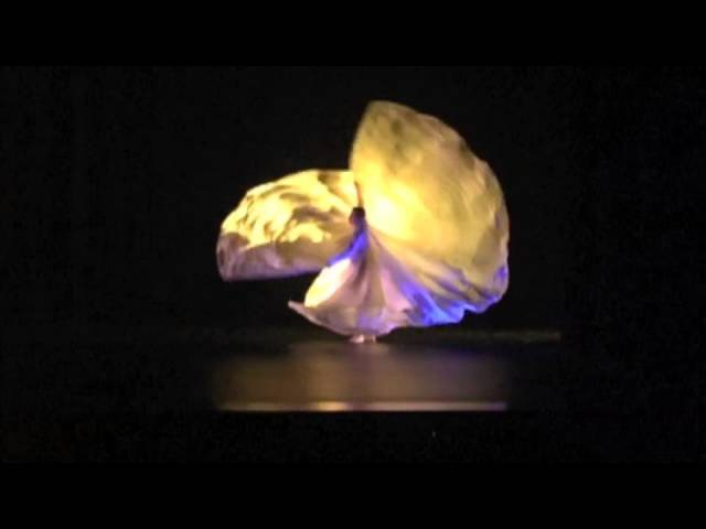 Jody Sperling performs Loie Fuller style solo Clair de lune at UMass FAC