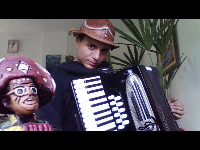 Antônio Pedro e João 4 Daniel Arano sanfona forró São João na roça acordeon