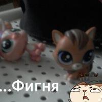 петы,только  не :(!
