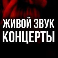 Логотип Живой звук в Пинте / Концерты / Ижевск