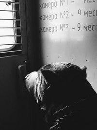 фото из альбома Дмитрия Самойлова №16