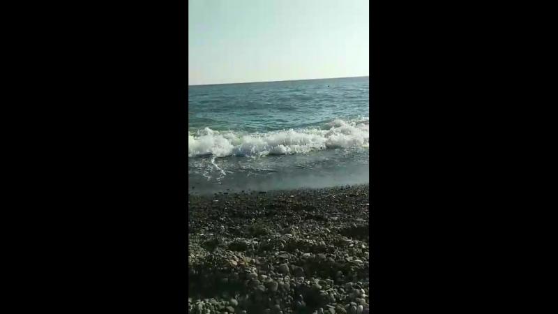 Video-dd477633781b4af243f7885bb23523a8-V.mp4
