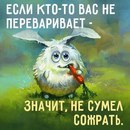 Фотоальбом Юлии Шляховой