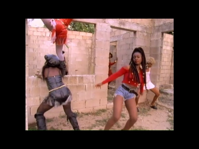 90s dancehall VIDEO MIX PART 2(Buju ,Shabba Ranks, Patra,Shaggy,SuperCat,Vegas,Degree,Cobra,