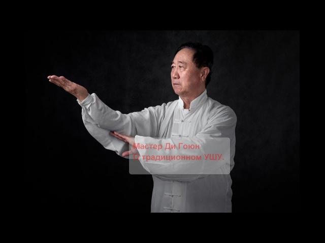 УШУ Мастерство Боевое искусство Кунг фу Интервью Мастера Ди Гоюна