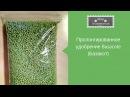 Пролонгированное удобрение Basacote (Базакот) для ахименесов