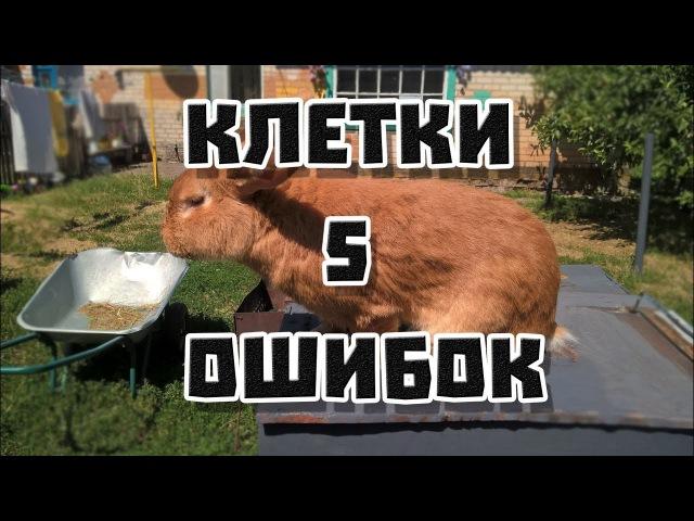 5 ошибок при строительстве клеток для кроликов   Дневник Кроликовода №5  Арболит...