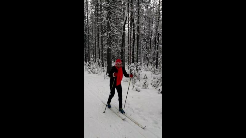 В Гайвинском лесу Январь 2018