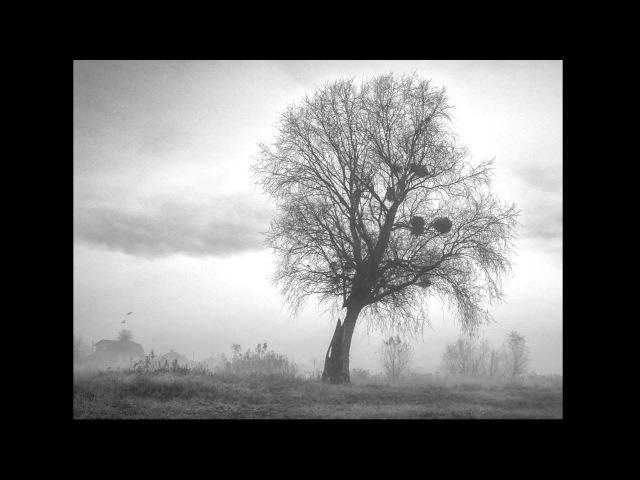Mieke - Искала Тебя Во Сне